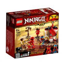 LEGO Ninjago Ninja Tempeltraining